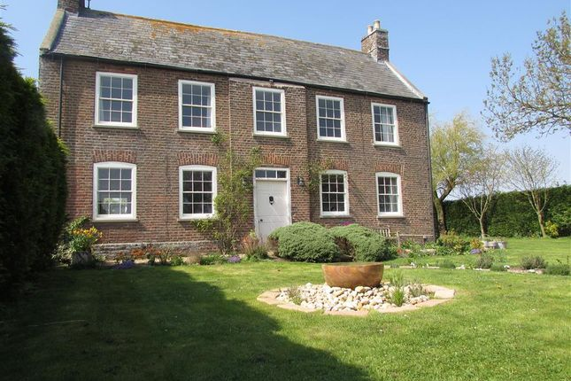 Thumbnail Detached house to rent in Woad Mill Bank, Tydd St. Mary, Wisbech