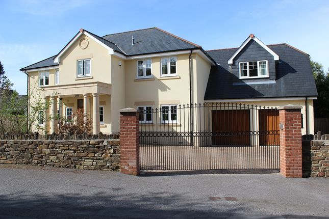 Thumbnail Detached house for sale in The Crescent, Crapstone, Yelverton, Devon
