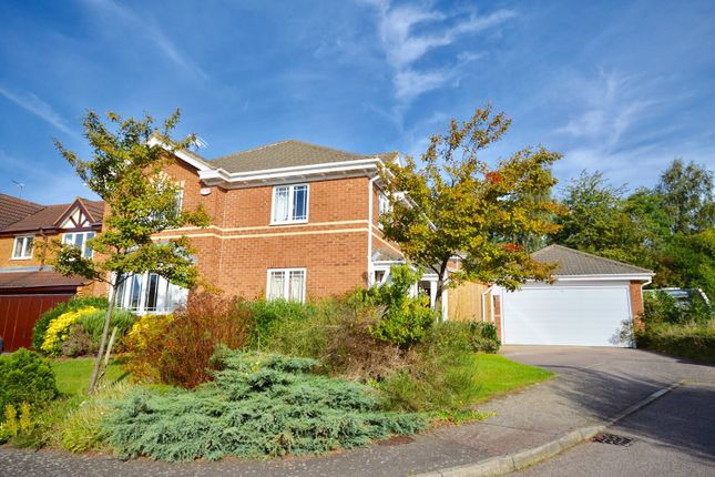 Thumbnail Detached house for sale in Mead Road, Kettering