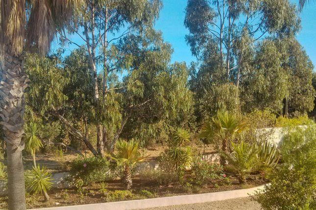 Garden of Mexilhoeira Grande, Portimão, Portugal