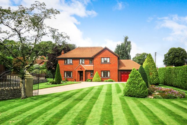 Thumbnail Detached house for sale in Larchwood, Wenvoe, Cardiff
