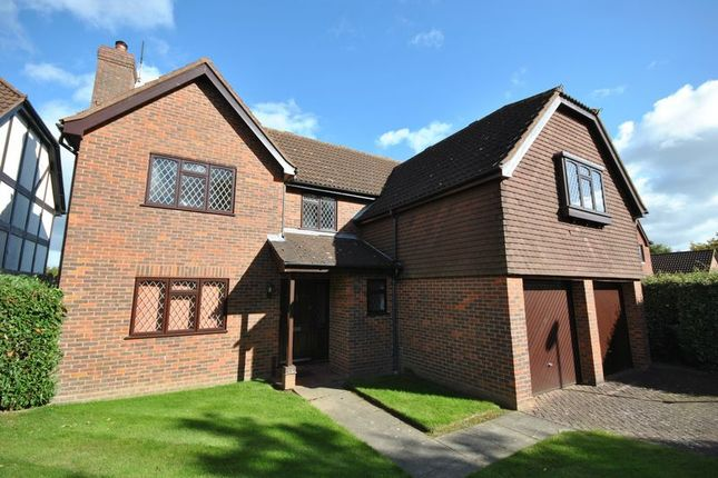 Thumbnail Detached house for sale in Broadmead Green, Thorpe End, Norwich