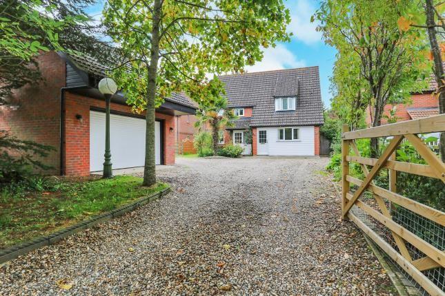Thumbnail Detached house for sale in Old Buckenham, Norwich, Norfolk