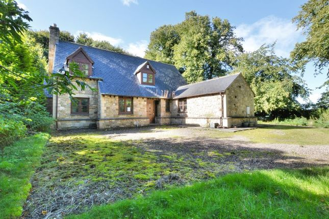 Thumbnail Detached house for sale in Waren Mill, Belford