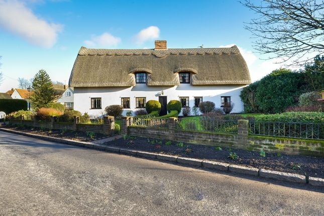Thumbnail Detached house for sale in Church End, Shalford, Braintree