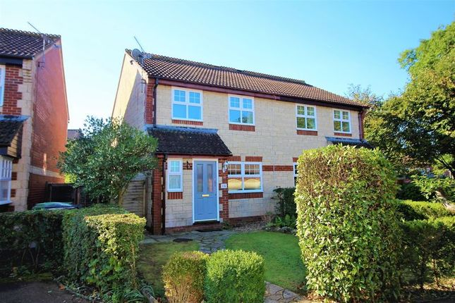 Thumbnail Semi-detached house to rent in Caraway Close, Chard