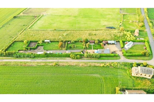 Thumbnail Detached house for sale in Chapel Lane, Soham, Ely