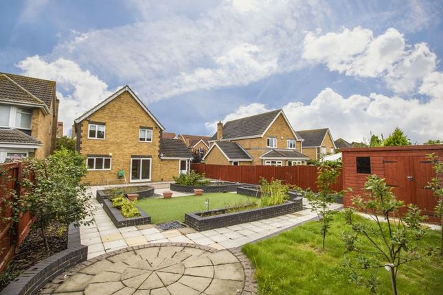 Thumbnail Detached house for sale in Rowan Grove, Aveley, South Ockendon