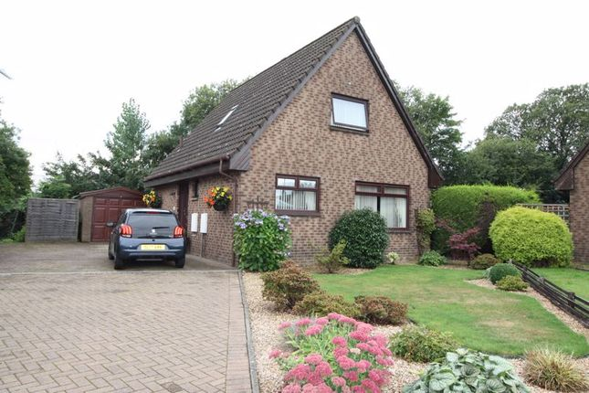 Thumbnail Detached house for sale in Downs Crescent, Alloa