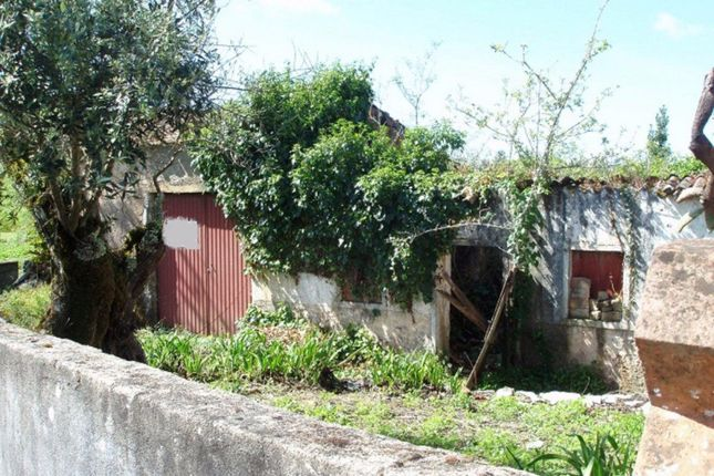 Property for sale in Ansiao, Leiria, Portugal