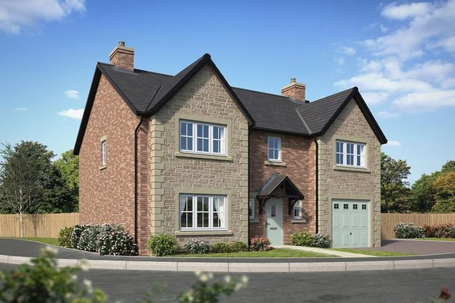 Thumbnail Detached house for sale in Waterside Cottam Way, Cottam, Preston