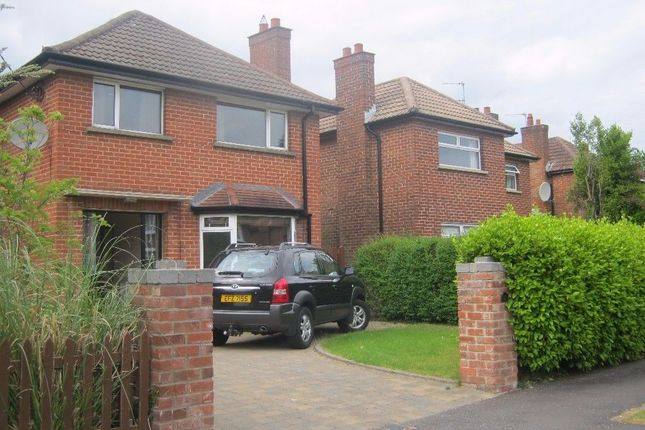 Thumbnail Detached house to rent in Blackwood Crescent, Helens Bay, Bangor