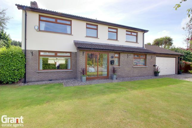 Thumbnail Detached house for sale in Brooklands Avenue, Newtownards