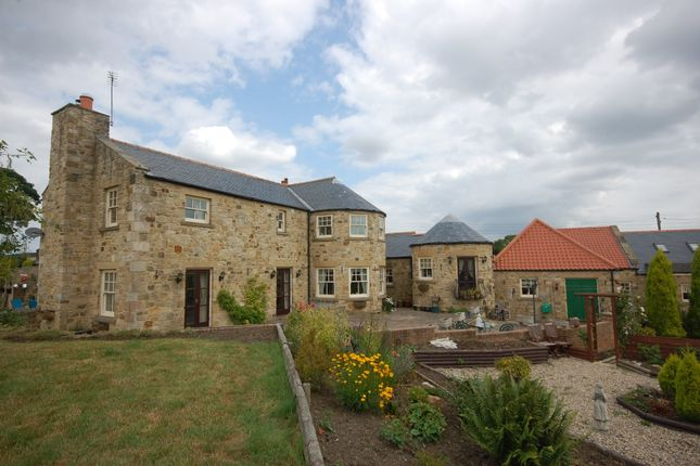 Thumbnail Detached house for sale in Alum Waters, New Brancepeth, Durham