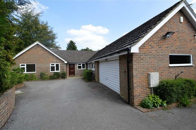 Thumbnail Detached bungalow for sale in Spout Hill, Rotherfield