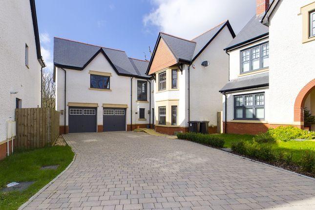 Thumbnail Detached house to rent in Howells Reach, Derwen Fawr, Swansea