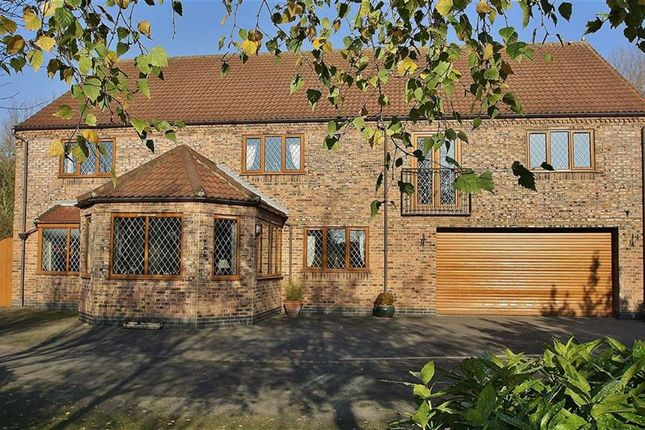 Thumbnail Property for sale in Haven Meadow, Barton-Upon-Humber