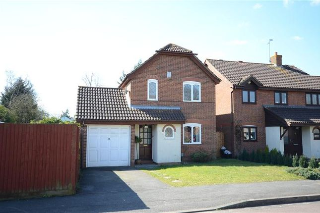 Thumbnail Detached house to rent in Turnstone Close, Winnersh, Wokingham
