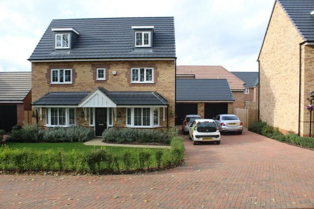 Thumbnail Property to rent in Cowley Meadow Way, Crick, Northampton