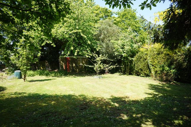 Thumbnail Land for sale in Pit Road, Burgh St. Peter, Beccles