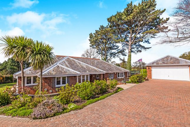 Thumbnail Detached bungalow for sale in St. Marys Lane, Bexhill-On-Sea