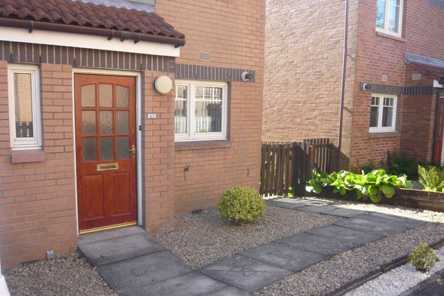 Thumbnail Semi-detached house to rent in Colliston Road, Dunfermline