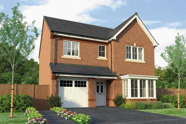 "Thumbnail Detached house for sale in ""The Glenmuir"" at Park Road South, Middlesbrough"