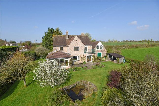 Thumbnail Detached house for sale in Folke, Sherborne, Dorset