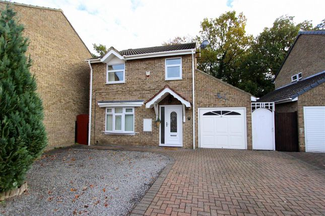 Thumbnail Detached house to rent in Hurworth Hunt, Newton Aycliffe