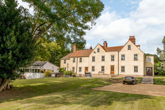Thumbnail Property for sale in Berechurch Hall Road, Blackheath, Colchester