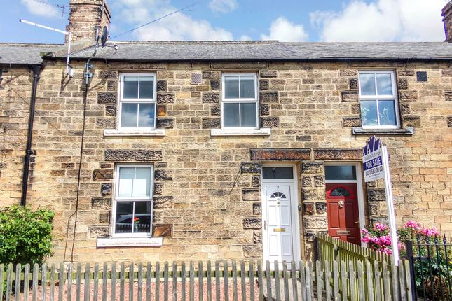 Thumbnail Terraced house to rent in Victoria Terrace, Alnwick
