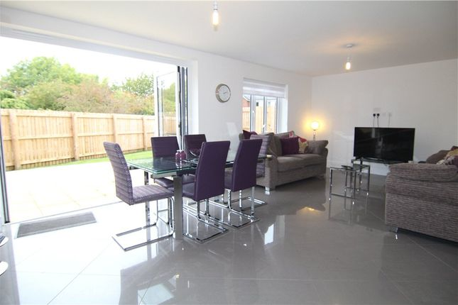 Thumbnail Detached house for sale in Hornbeam Close, Durham