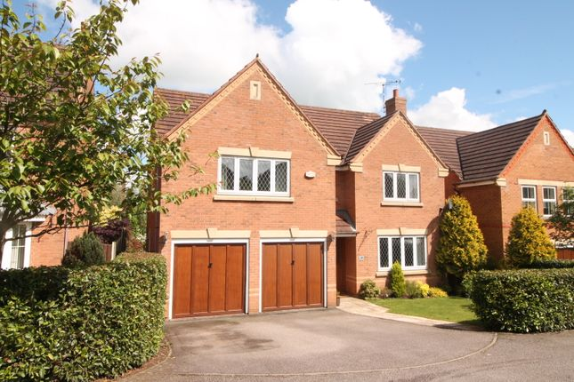 Thumbnail Detached house for sale in Newbury Drive, Daventry