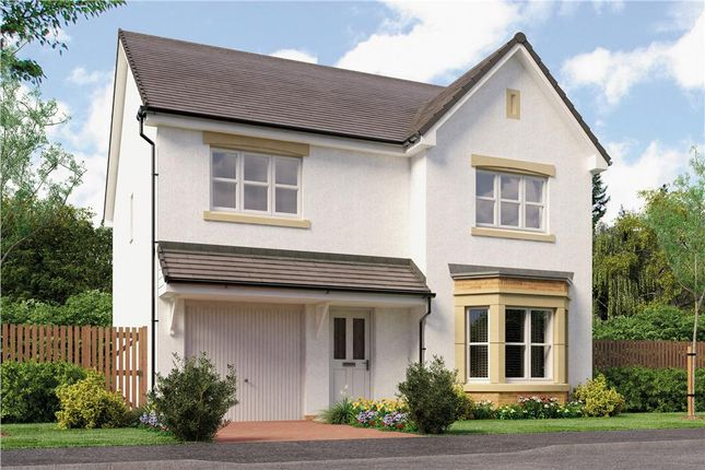 "Thumbnail Detached house for sale in ""Dale"" at Broomhouse Crescent, Uddingston, Glasgow"