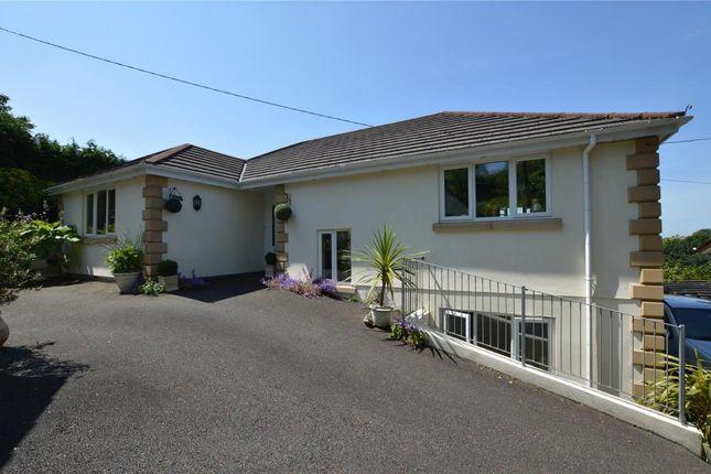 Thumbnail Detached house for sale in Limes Lane, Liskeard, Cornwall