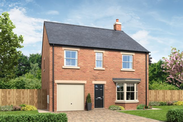 Thumbnail Detached house for sale in Peter's Mill, Alnwick