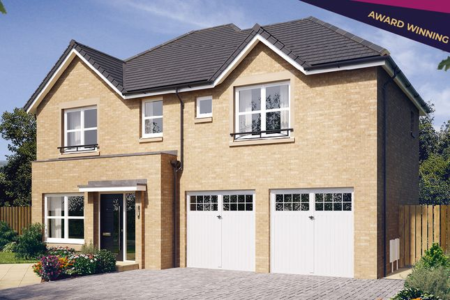 """Thumbnail Detached house for sale in """"The Westbury"""" at Blantyre, Glasgow"""