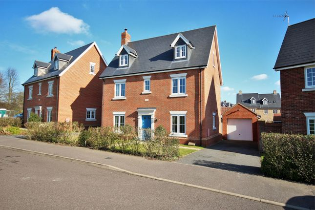 Thumbnail Detached house for sale in Apprentice Drive, Colchester, Essex