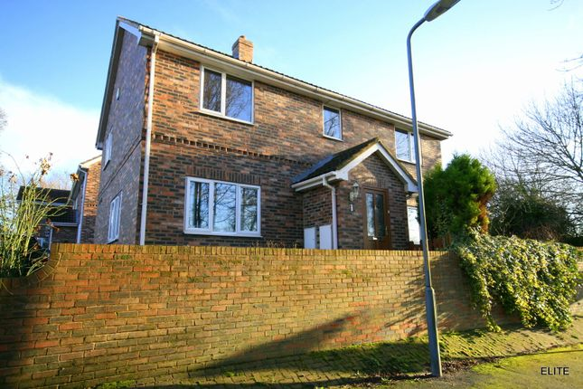 Thumbnail Detached house to rent in Burnwood Court, Long Newton, Stockton On Tees