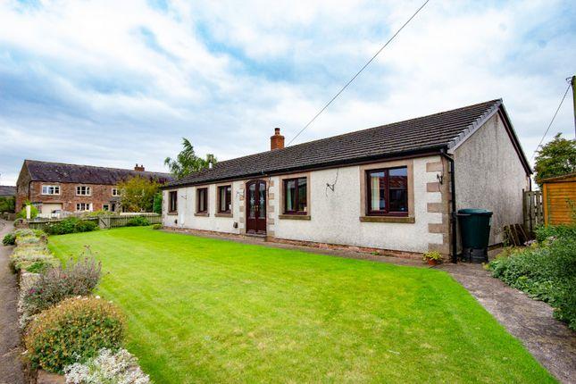 Thumbnail Detached bungalow for sale in New Bungalow, Fingland, Kirkbride, Wigton