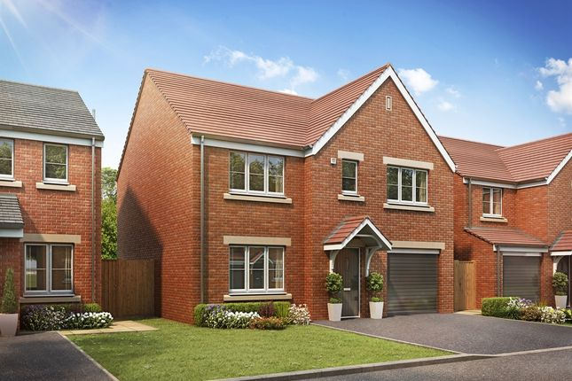 "Thumbnail Detached house for sale in ""The Winster"" at Brickburn Close, Hampton Centre, Peterborough"