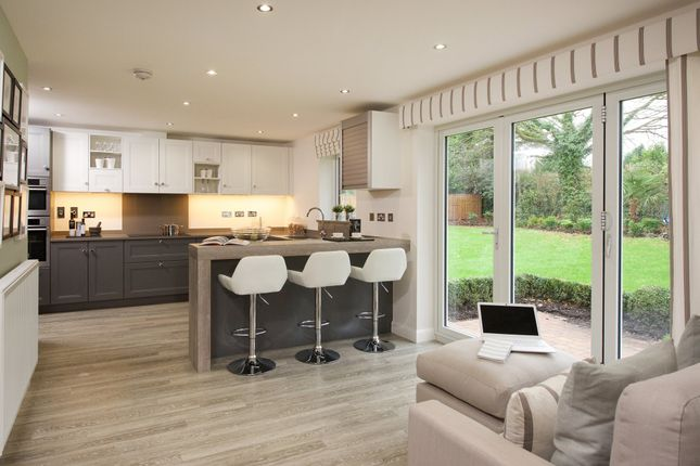 "Thumbnail Detached house for sale in ""Colvend"" at Haddington"