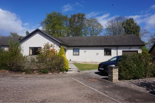 Thumbnail Detached bungalow for sale in Wallace Court, Dingwall