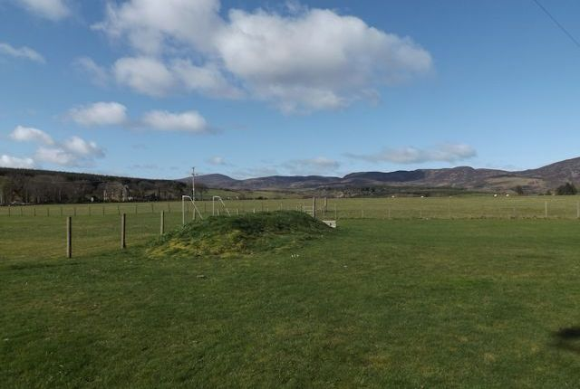 View To Struie Hill From Plot