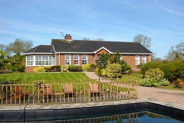Thumbnail Detached house to rent in Tullyglush Road, Banbridge