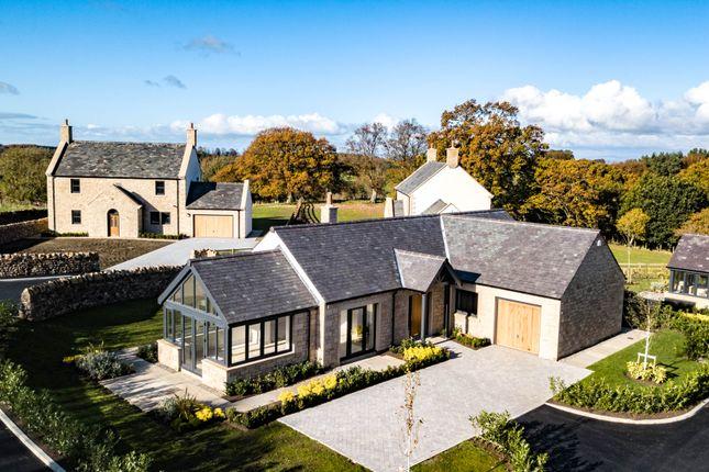 Thumbnail Detached bungalow for sale in Talkin, Brampton