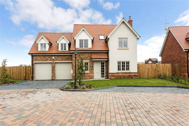 Thumbnail Detached house for sale in Beechview Drive, Waltham Abbey, Essex
