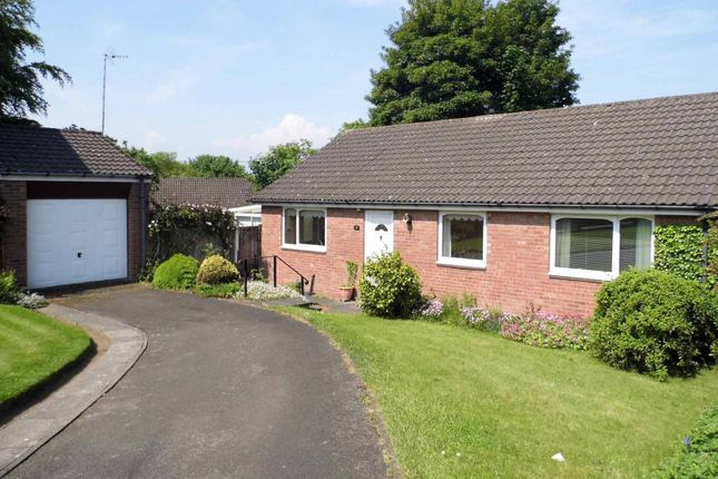 Thumbnail Bungalow to rent in Fernway, Morpeth