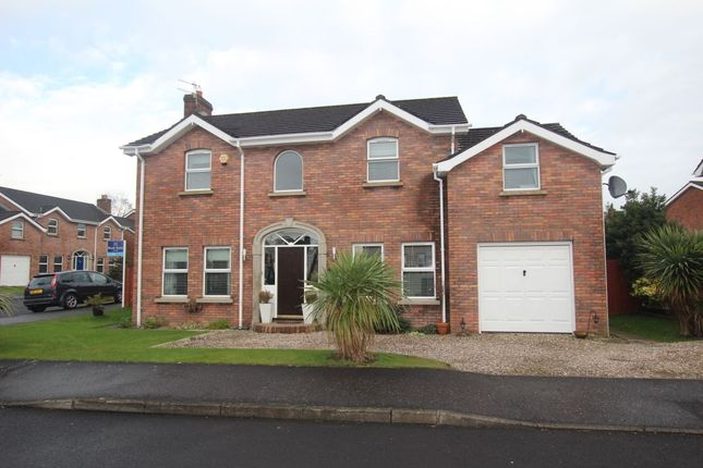 Thumbnail Detached house for sale in Berry Lane, Newtownabbey