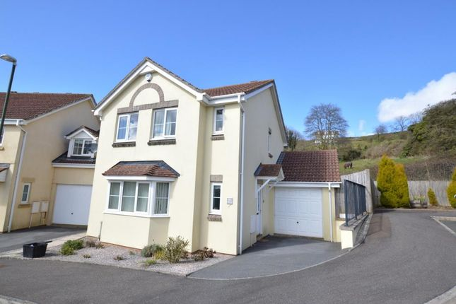 Thumbnail Detached house for sale in Martinique Grove, Torquay, Devon